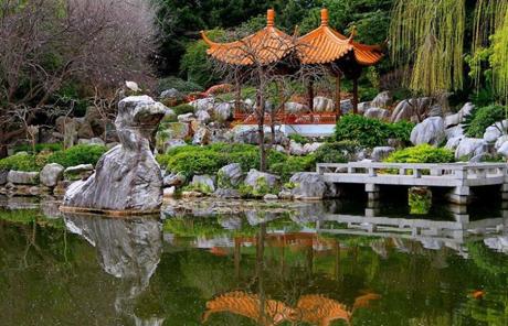 El jard n chino de la amistad en sidney for Jardines chinos pequenos