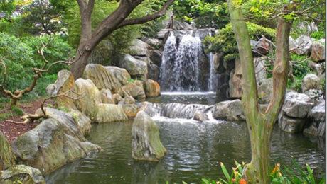 El jard n chino de la amistad estudio dise o y for Chino el jardin