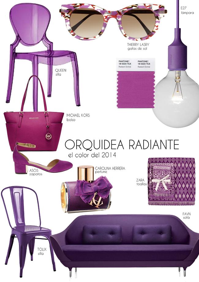 orquidea radiante